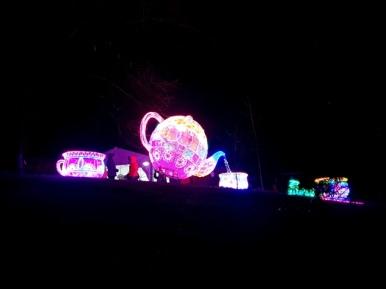 Magical Lanterns (16)