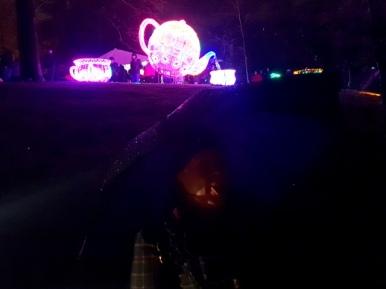 Magical Lanterns (17)