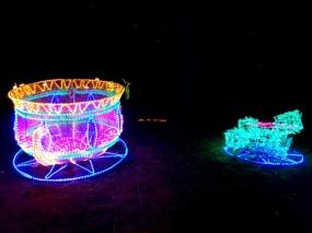 Magical Lanterns (5)